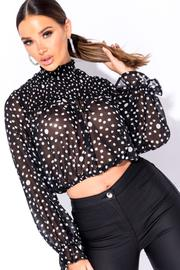 Polka Dot Sheer Crop Top